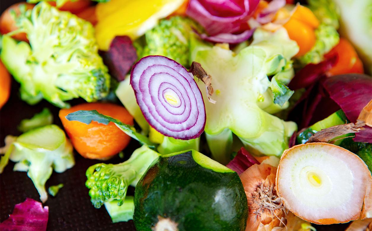 Les déchets alimentaires : un problème social, environnemental, économique et personnel.