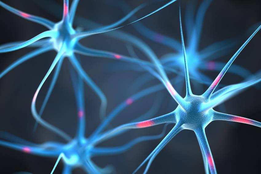 Magnesium und Kalium – Wofür brauchen wir sie?