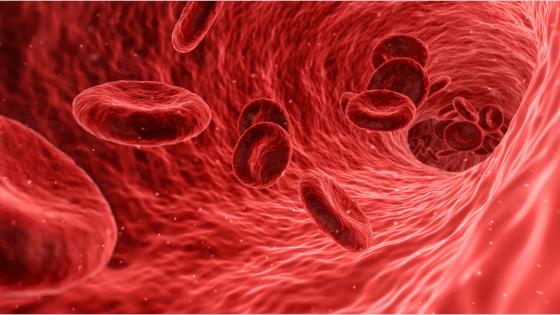 Le armi più efficaci per battere l'ipercolesterolemia