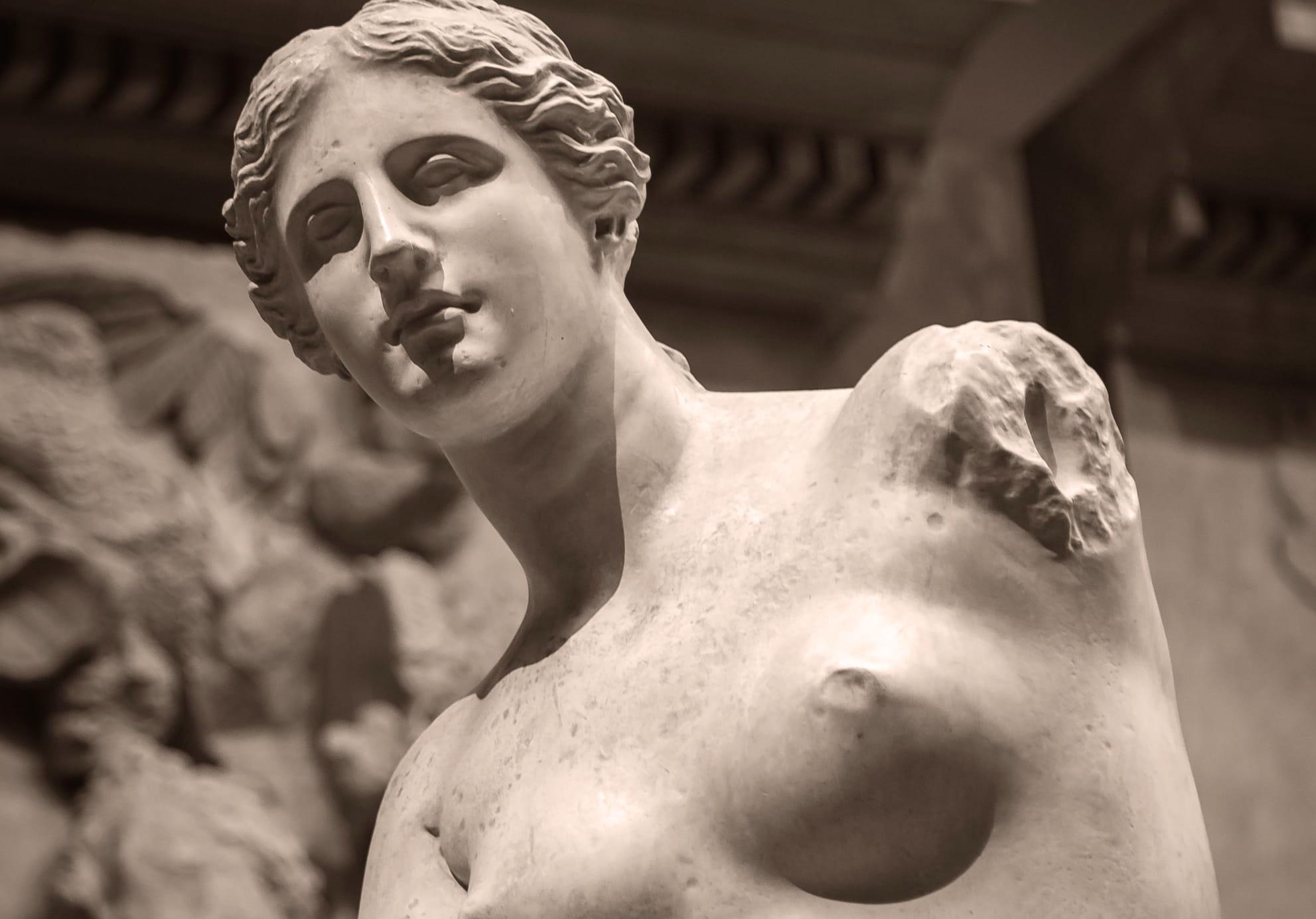 Schön wie Venus – Diese Nährstoffe pflegen uns von Innen