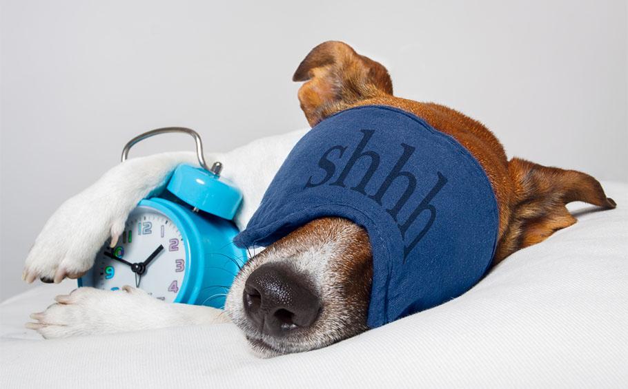 Les bienfaits du sommeil pour le corps et pour l'esprit